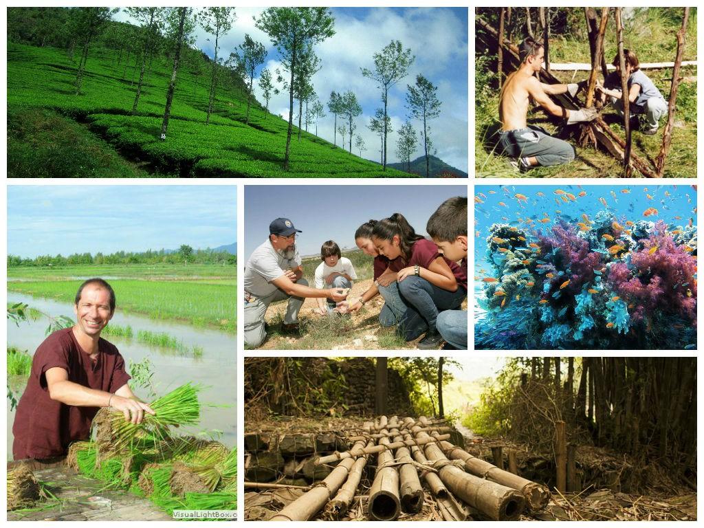 ecotourisme4